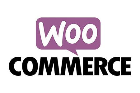 Importando productos a Woocommerce con campos extra